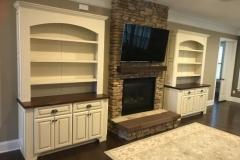 custom-wall-units-march_6_20190326_1260440136