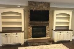 custom-wall-units-march_7_20190326_1834468145